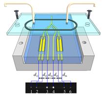 Image of a biosensor