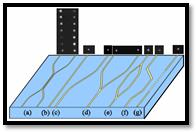 Plasmoniques intégrés