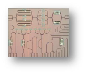 Image des modulateurs et commutateurs PIN (Si)