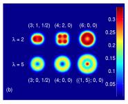 Image des dynamiques dans les gazes quantiques enfermées