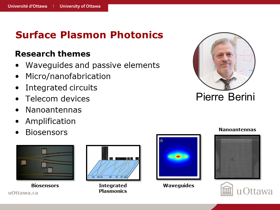 Pierre Berini: Surface Plasmon Photonics