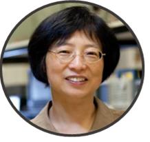 Portrait de Dr Xiaoyi Bao